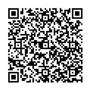 中华会计网校选课二维码